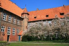 rathaus_4050-1000